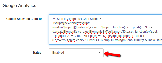 Pasting the Zopim Script in the Google Analytics field